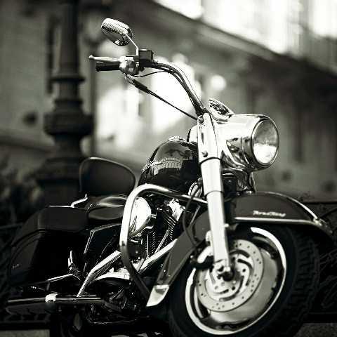 バイクに乗り飽きたヒトへ。←バイク王にお売り下さい。